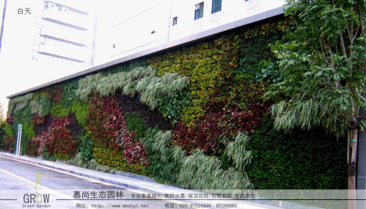 室外生态植物墙