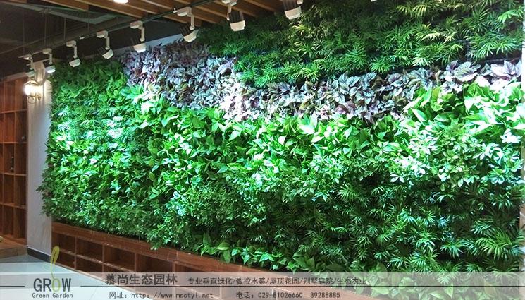 電影院植物墻