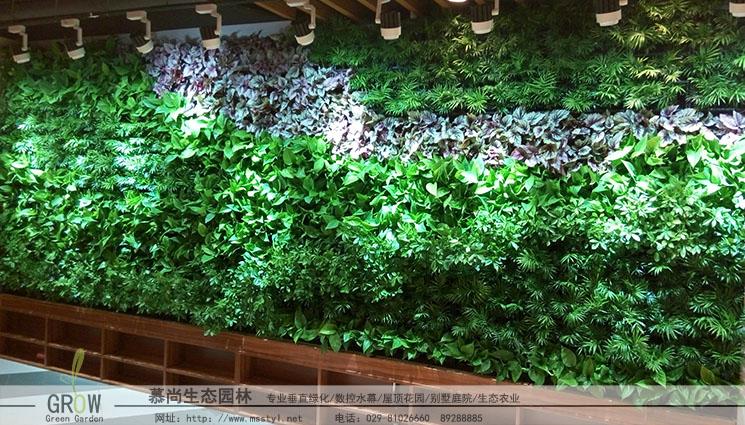 咸阳植物墙
