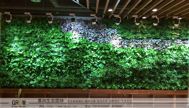 咸阳室内植物墙
