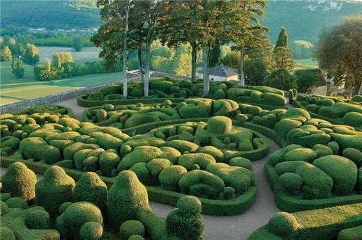 西安植物雕塑公司