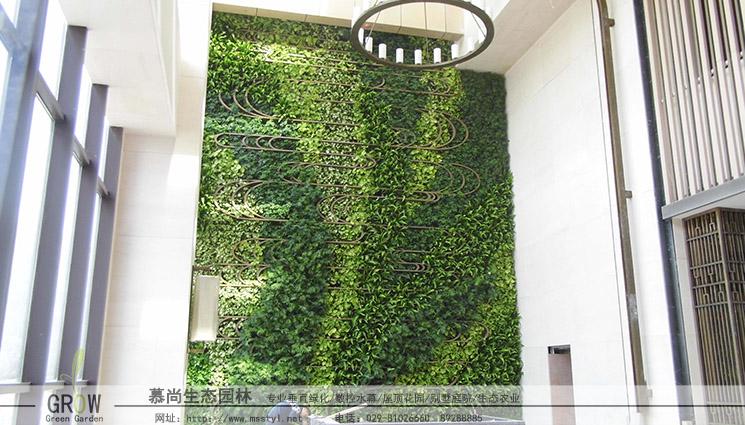 西安植物墙