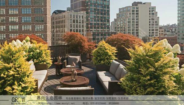 屋頂綠化,西安屋頂綠化,西安屋頂綠化設計,西安屋頂綠化制作,西安屋頂綠化報價,西安屋頂綠化多少錢一平方