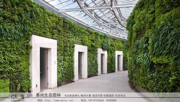 垂直立體綠化