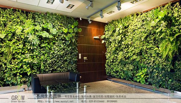 立體綠化植物墻
