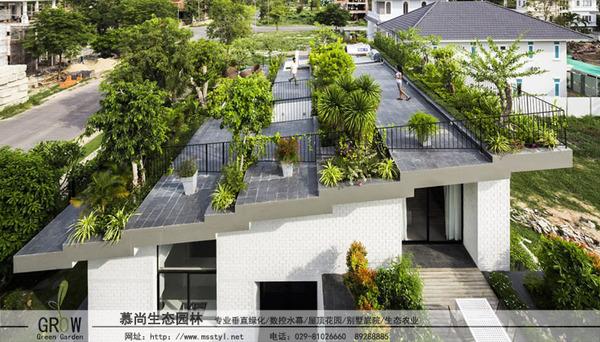 容器式屋頂綠化