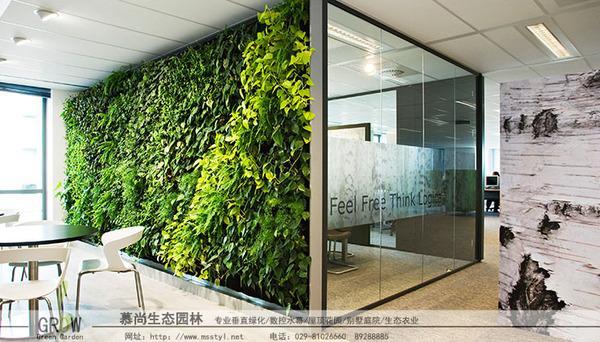 城市綠植墻
