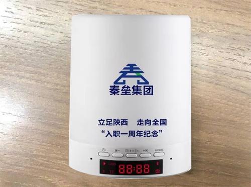 秦垒定制周年音响