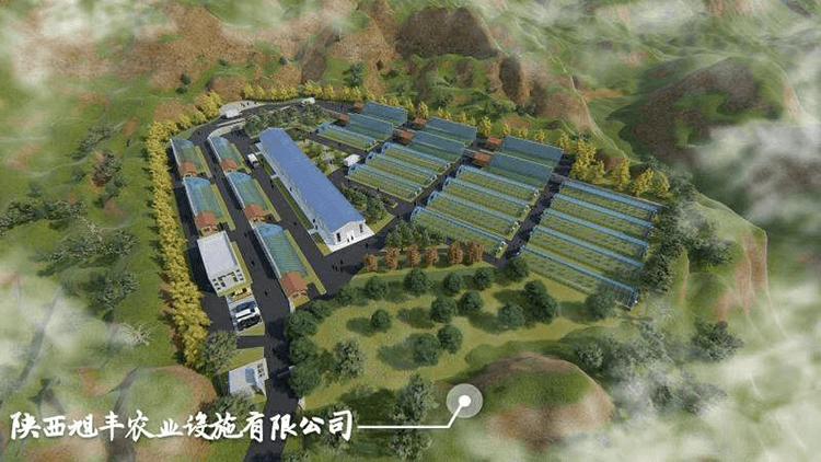 温室大棚建设公司