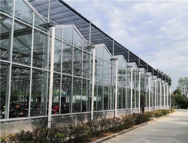 智能连栋温室大棚