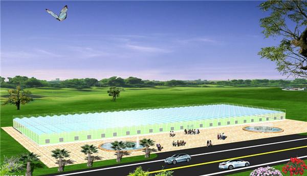 甘肃新型温室大棚建设