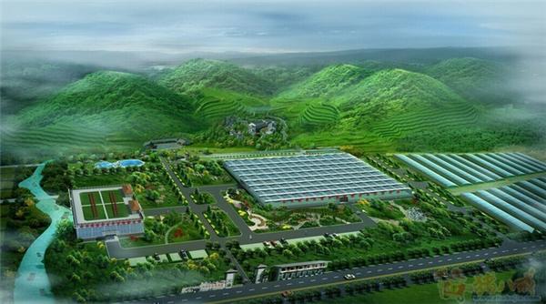 陕西生态温室大棚建造