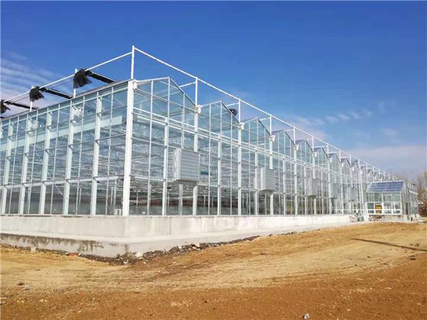 喷塑智能玻璃温室