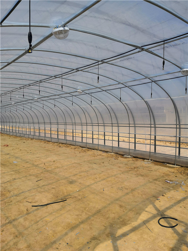 榆林食用菌温室