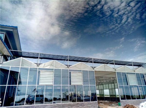宝鸡市高铁南站智能玻璃温室项目