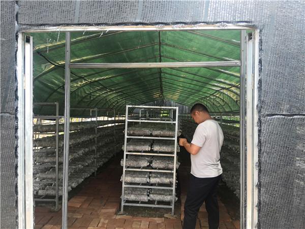 安康市紫阳县双坪村省科技厅食用菌扶贫项目大棚建设