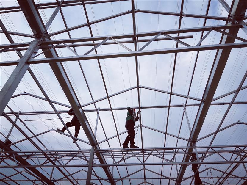 温室大棚建造厂家
