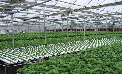 智能温室大棚一站式解决方案是什么?有哪些相关产品?