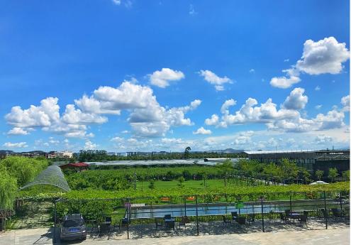 生态餐厅选择玻璃连栋温室有什么好处?