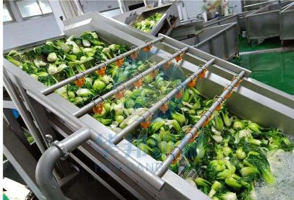 蔬菜清洗机为果蔬企业带来的优势