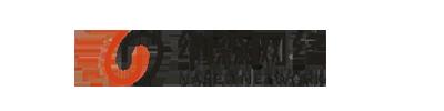 沈阳纳森网络科技有限公司_Logo