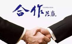 沈阳网站优化公司