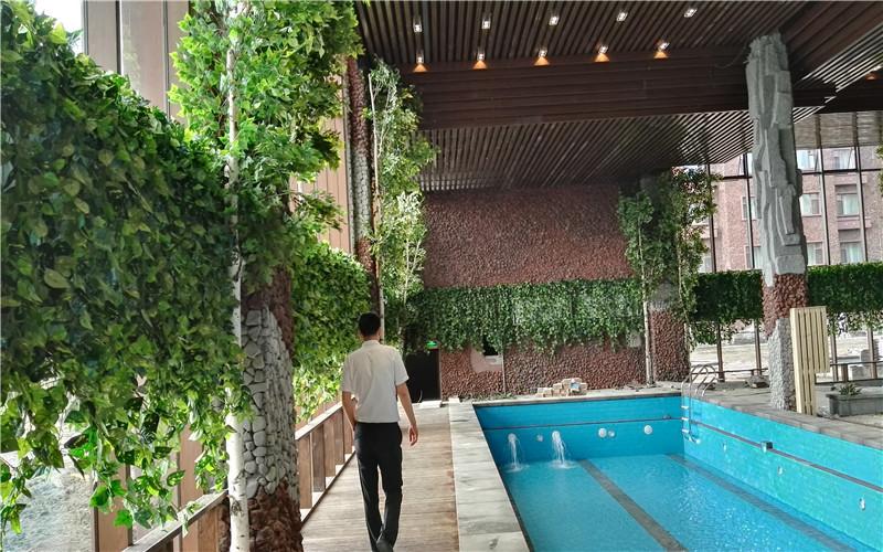长白山王朝圣地温泉旅店绿植造景