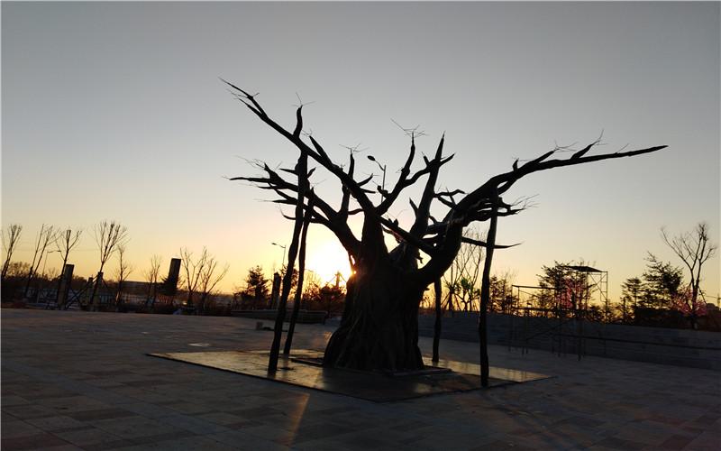 沈陽仿真樹