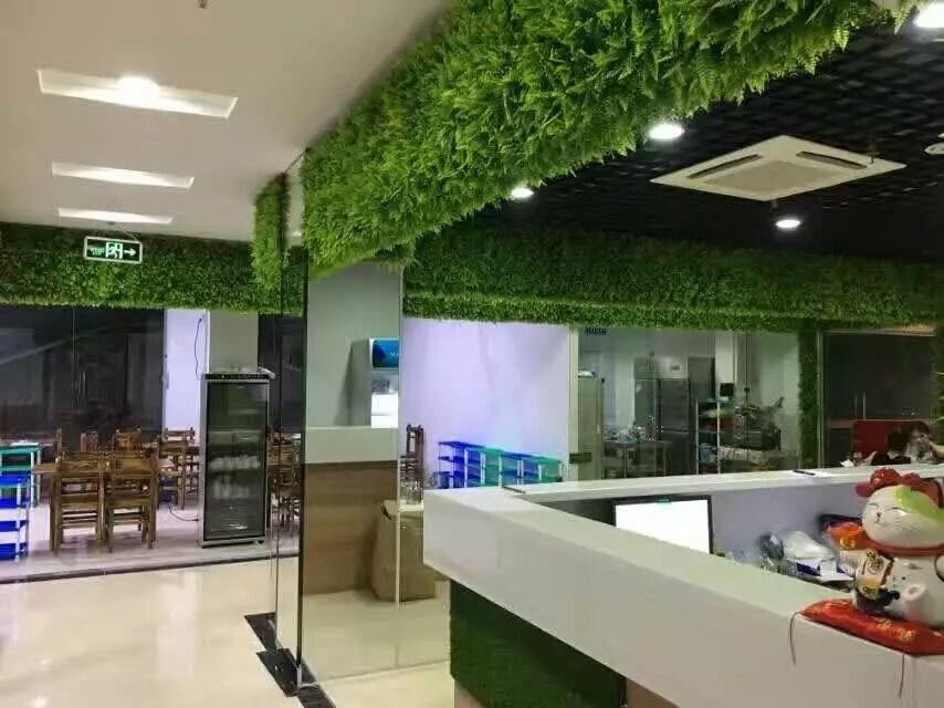绿植墙-温泉酒店会所