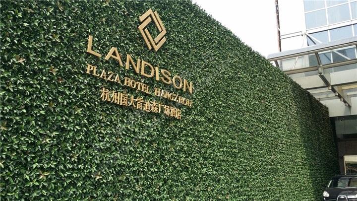 室外公用绿植墙