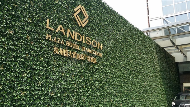 绿植墙-室外专用