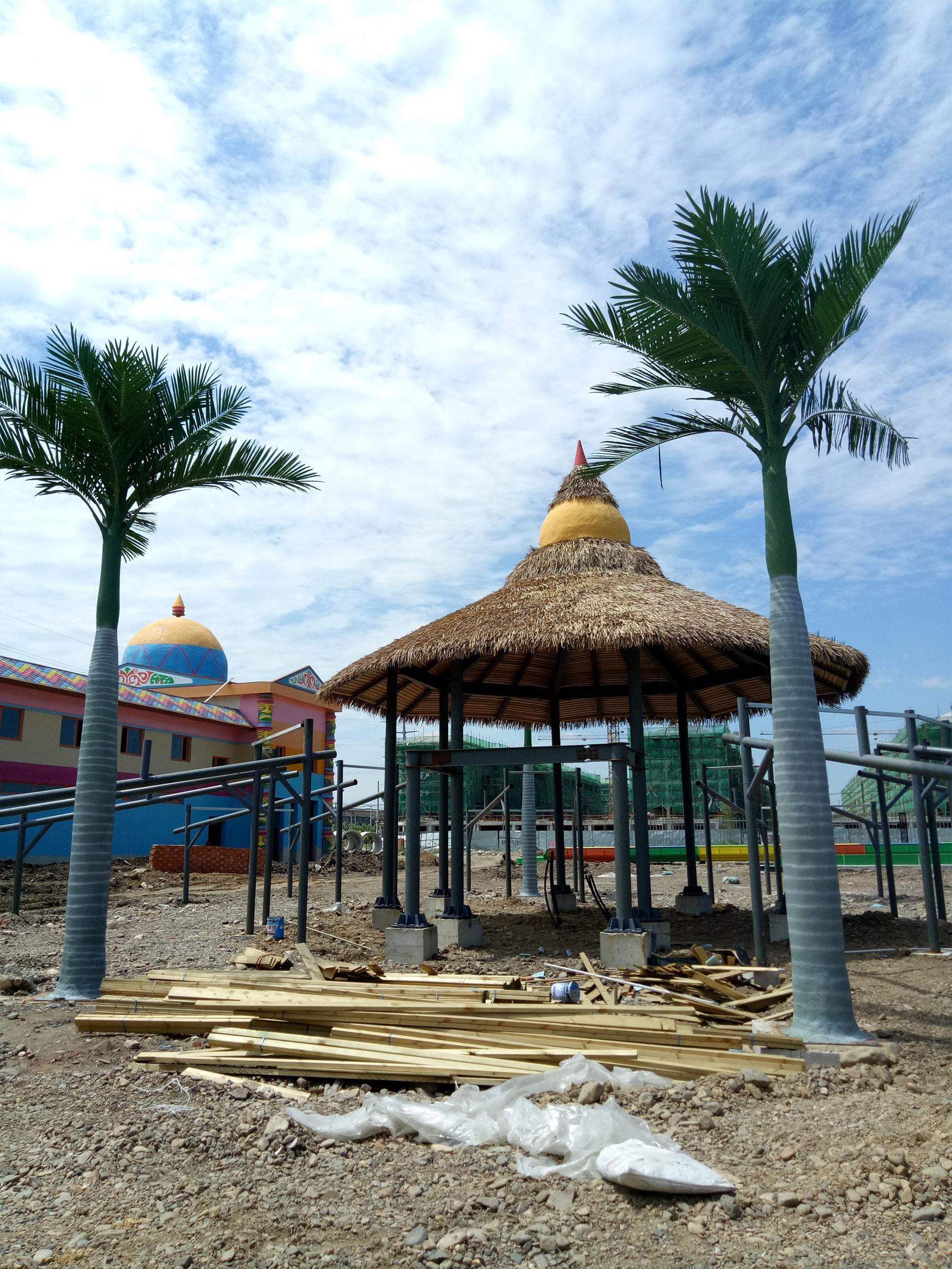 大王椰子树