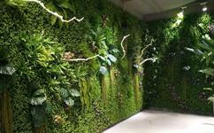 沈阳绿植墙