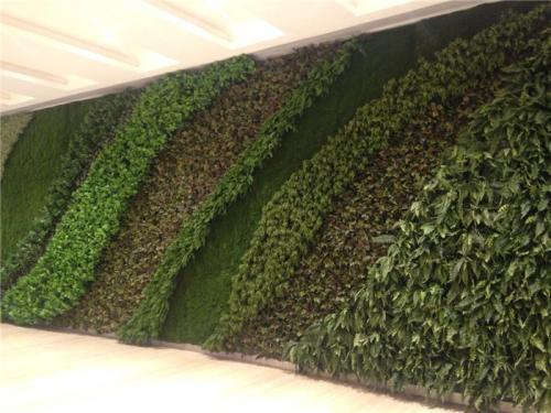 沈阳绿植墙厂家