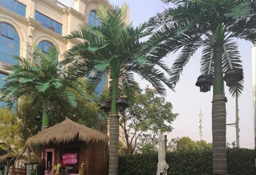 仿真大王椰樹