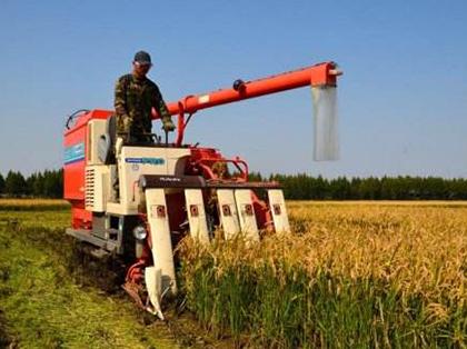 半喂入水稻收获机