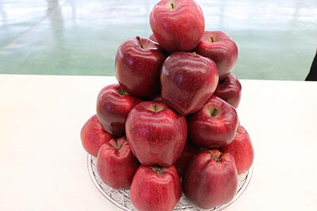花牛苹果热量高吗