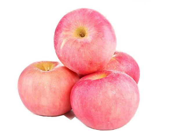 红富士苹果的特点,红富士苹果有哪些特征