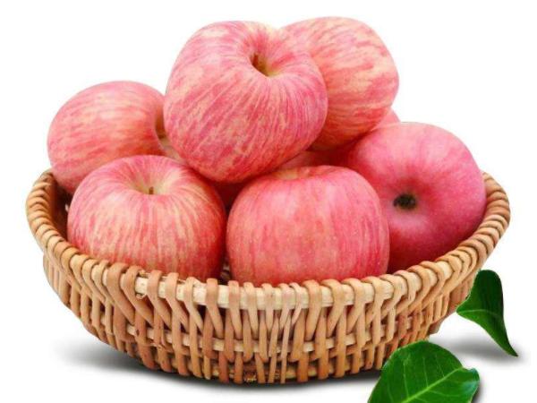 说说一般什么时间吃香脆可口的红富士苹果比较好?