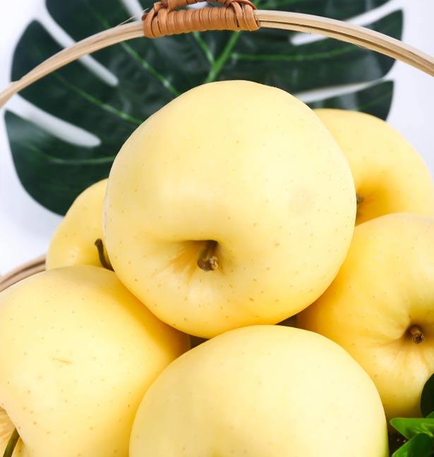 十二粒黄元帅苹果