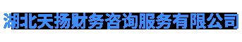 湖北天揚財務咨詢服務有限公司