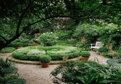 庭院景观设计中植物造景的类型