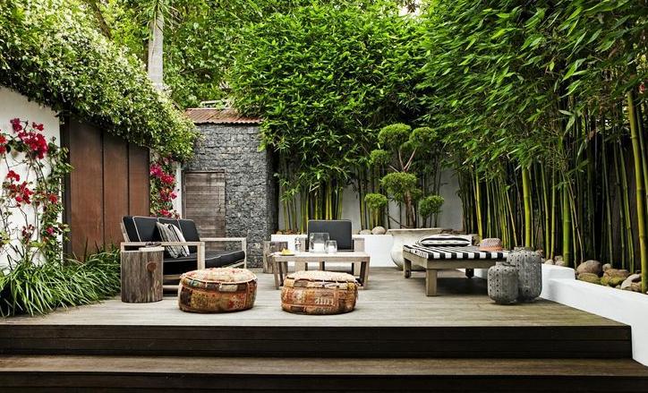 种植一些竹子就能打造一个高品质庭院