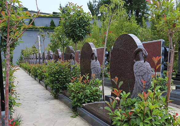 咸阳陵园-紫云园
