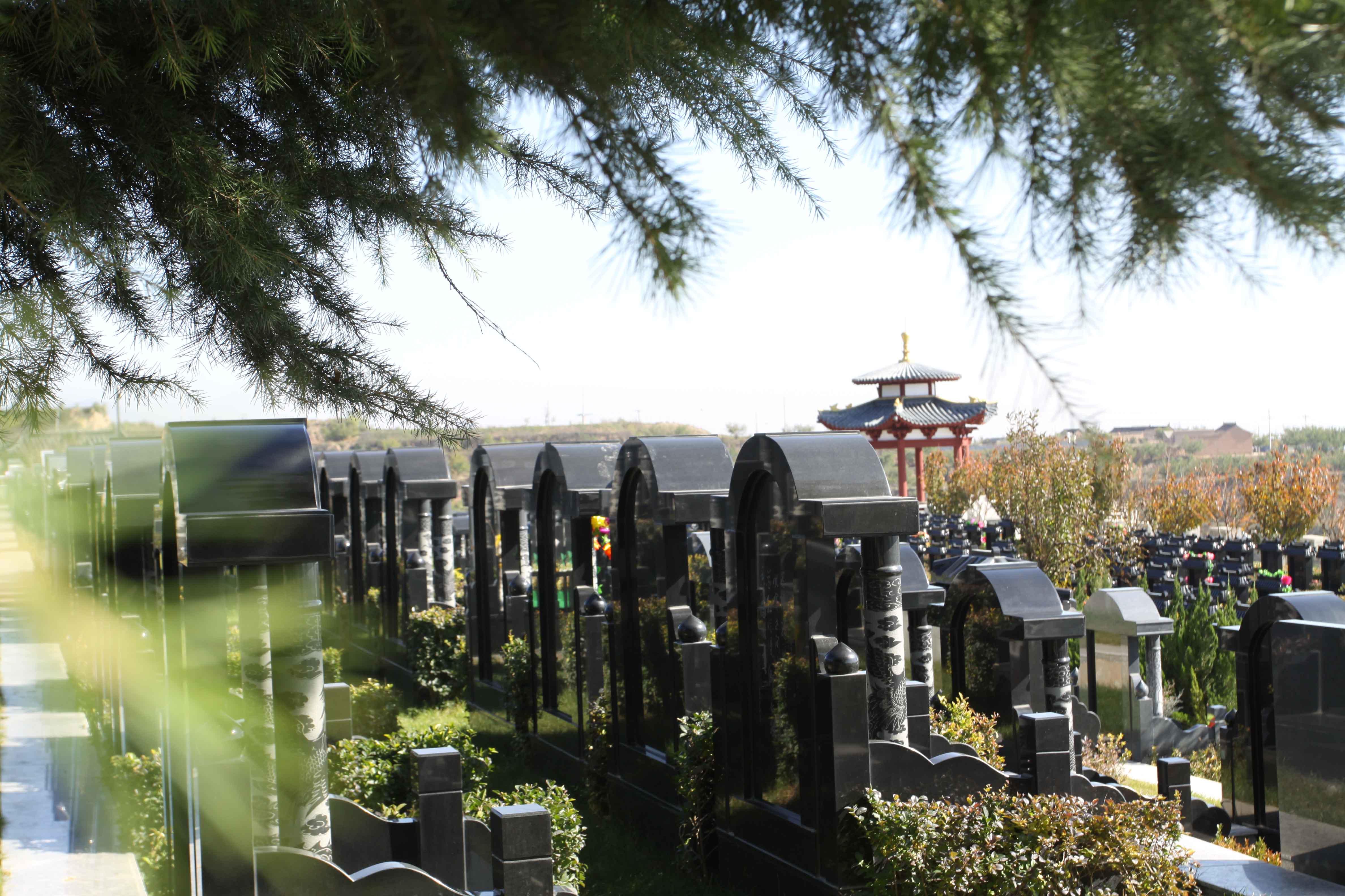 西安市周边墓园设计中绿化植被的注意事项