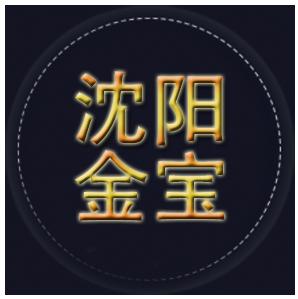 沈阳金宝信息技术有限公司