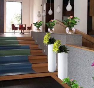 第一色福利导航【AG集团网址: kflaoge88.com 】花卉教你办公室植物租擺选择有讲究,植物的正确摆放你知道吗?