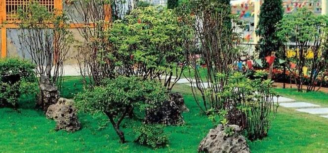 第一色福利导航【AG集团网址: kflaoge88.com 】花卉:庭院植物綠化對居家的保護作用