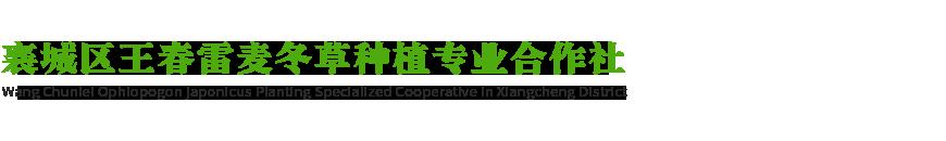 襄城区王春雷麦冬草种植专业合作社