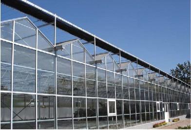 宁波/衢州玻璃温室大棚一个平方米的价格